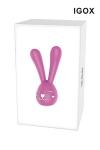 Mini Rabbit Nancy