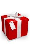 Emballage cadeau - Une pochette cadeau et un nœud raphia assorti.